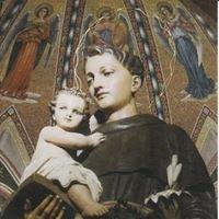 Parrocchia Sant'Antonio di Padova - Pescara