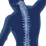 Consultório Fisioterapia Online