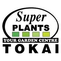 Morne's Super Plants