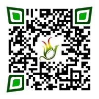 Olivecoal créateur de charbon écologique sans bois