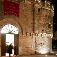Museo Mosaico Oggi - Fondazione Fernanda Tollemeto