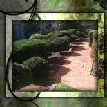 Colorscape Gardening