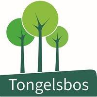 Buso Tongelsbos