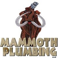 Mammoth Plumbing LLC.