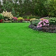 Turf and Garden, Inc