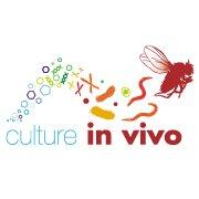 Culture in vivo asbl
