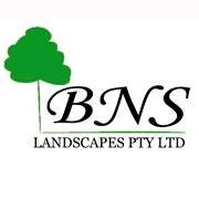 BNS Landscapes