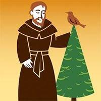 St Francis Christmas Trees