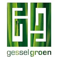 Gessel Groen