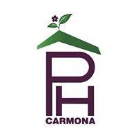 P.H.Carmona-arquitetura,paisagismo e tetos vivos