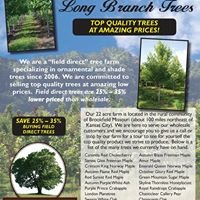 Long Branch Tree Farms