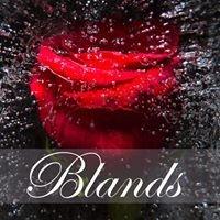 Blands Flower Shop & Gifts