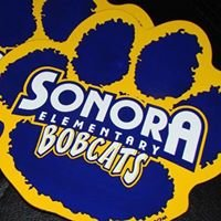 Support Sonora School