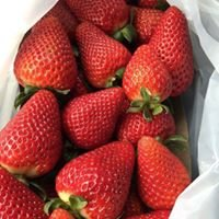 Okui's Strawberry Stand