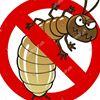 Treloars Pest Control Services