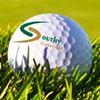 Southy Custom Golf