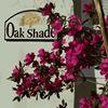 Oak Shade Gulf Coast Retreat