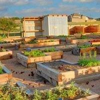 Harvest Real Estate