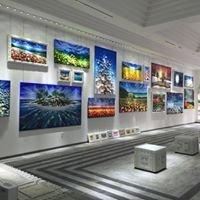 AlexArt International Art Gallery - Sarasota, Florida - USA