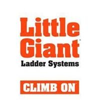 Little Giant Ladders, India