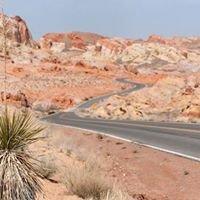 Clark County Nevada Real Estate