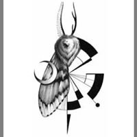 Gypsy_Moth