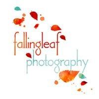 Falling Leaf Photography