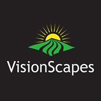 VisionScapes