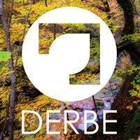 Derbe Muebles
