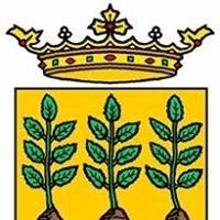 Ayuntamiento De VÉLEZ RUBIO