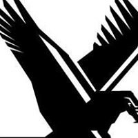 Eagle Plumbing & Repairs LLC