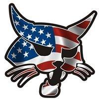 Bobcat of the Finger Lakes