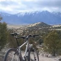 Northern Nevada Real Estate