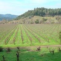 Wine Country Homes Saint Helena