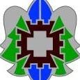 320th Medical Company (Hospital)