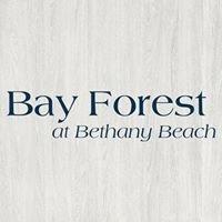 Bay Forest Beach