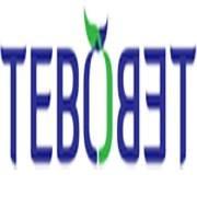 Tebo Tebo Tea Lounge