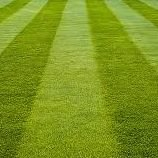 Precision Mowing and Landscaping
