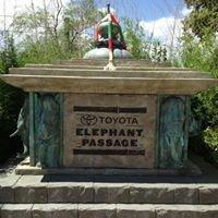 Elephant Passage Denver Zoo