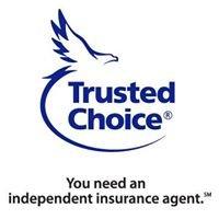 AmeriCorp Insurance Group