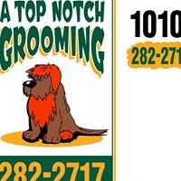 A Top Notch Professional Grooming