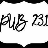 Pub 231