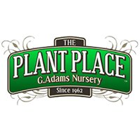 The Plant Place