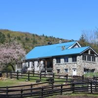 Beryl Mountain View Farm