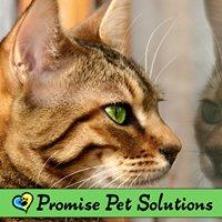 Promise Pet Solutions