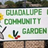 Guadalupe County Community Garden