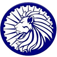 The Lion Real Estate Group