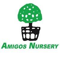 Amigos Nursery, LLC