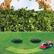 Jenic Lawn Care