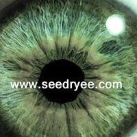 Chatto & Yee Optometrists, PC